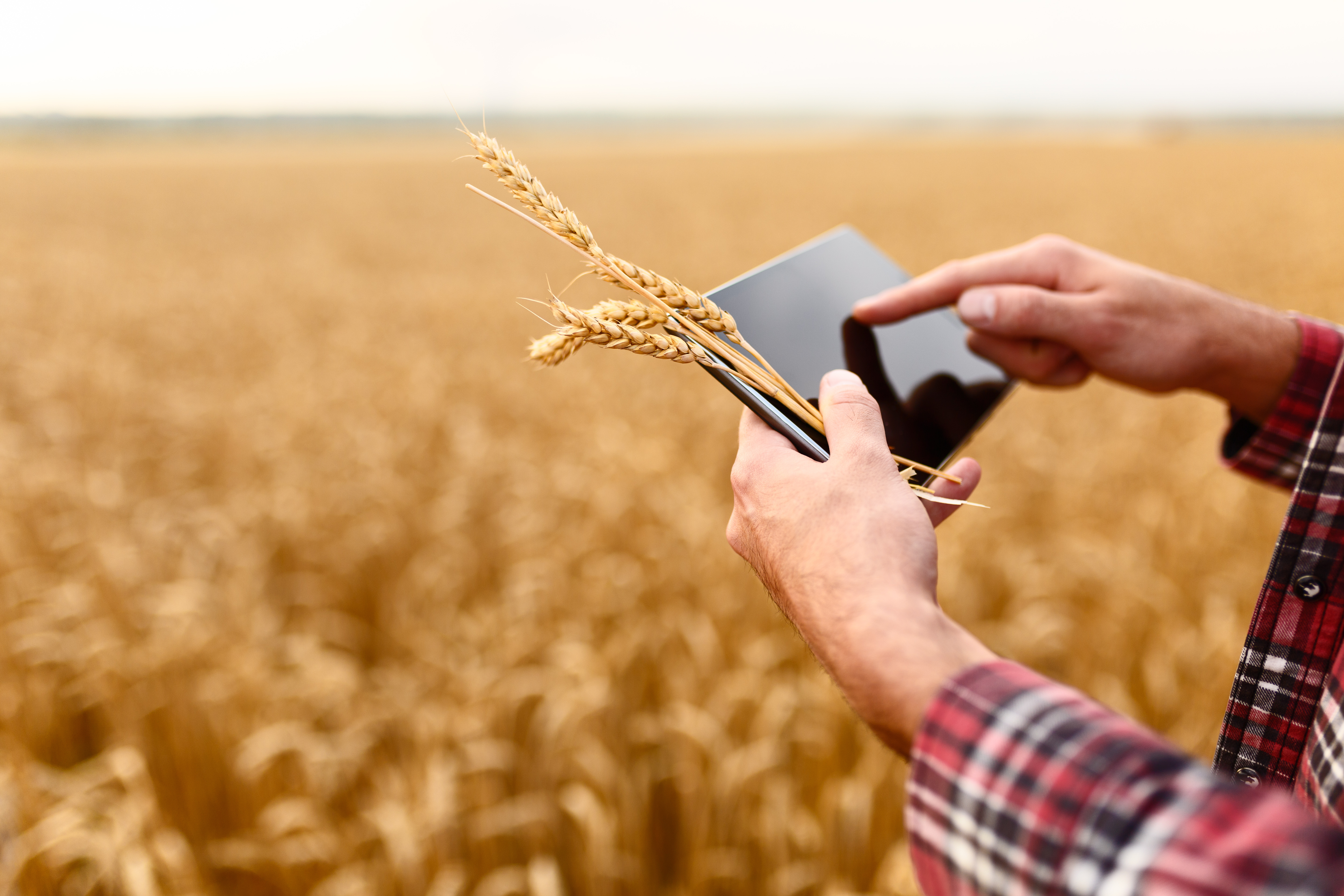 Agricultural community harvests value of data with Dawex technology