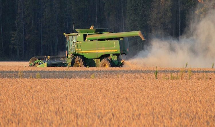 Farm machine harvesting wheat field